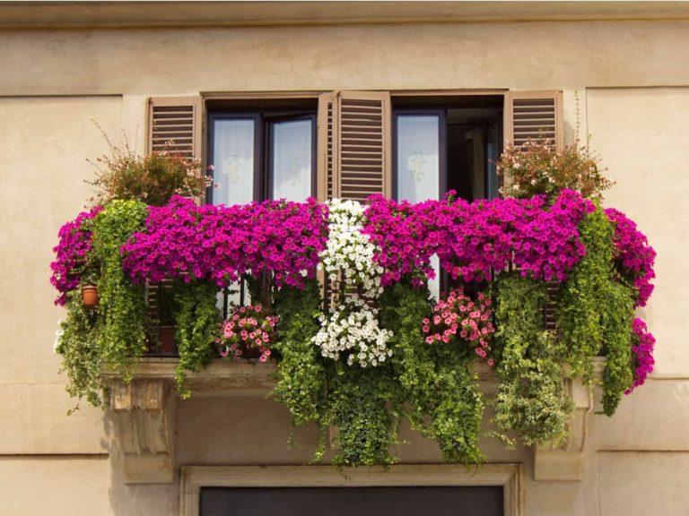 Balcón colonial con flores